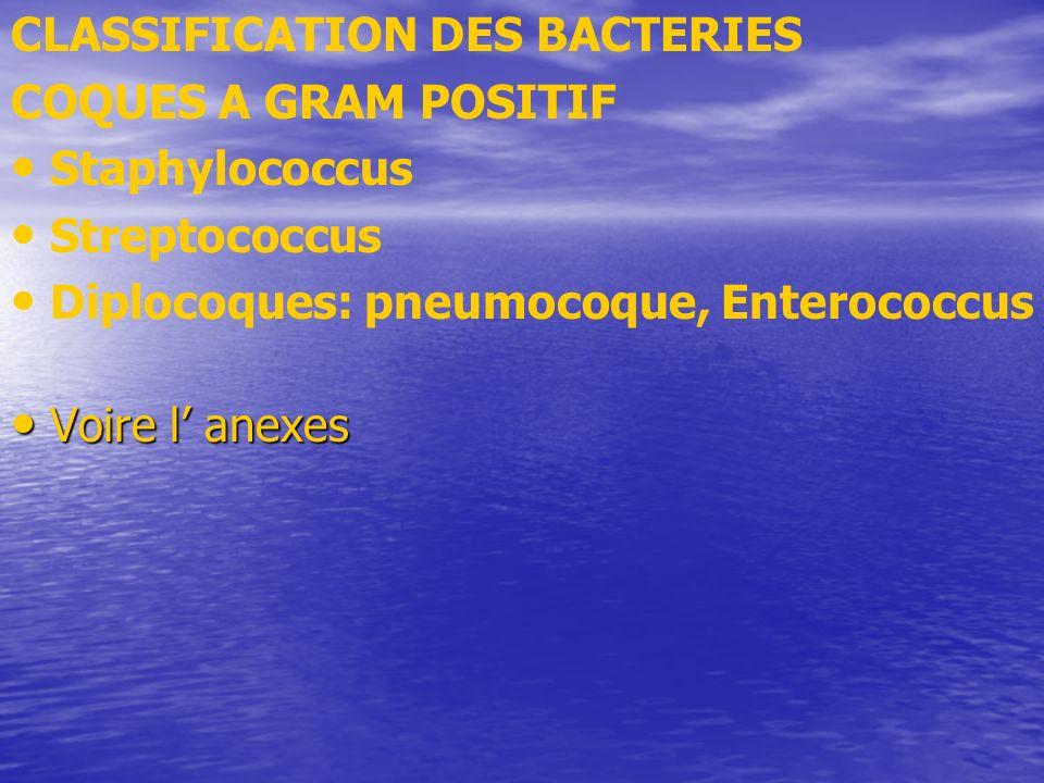 CLASSIFICATION DES BACTERIES COQUES A GRAM POSITIF Staphylococcus Streptococcus Diplocoques: pneumocoque, Enterococcus Voire l anexes Voire l anexes