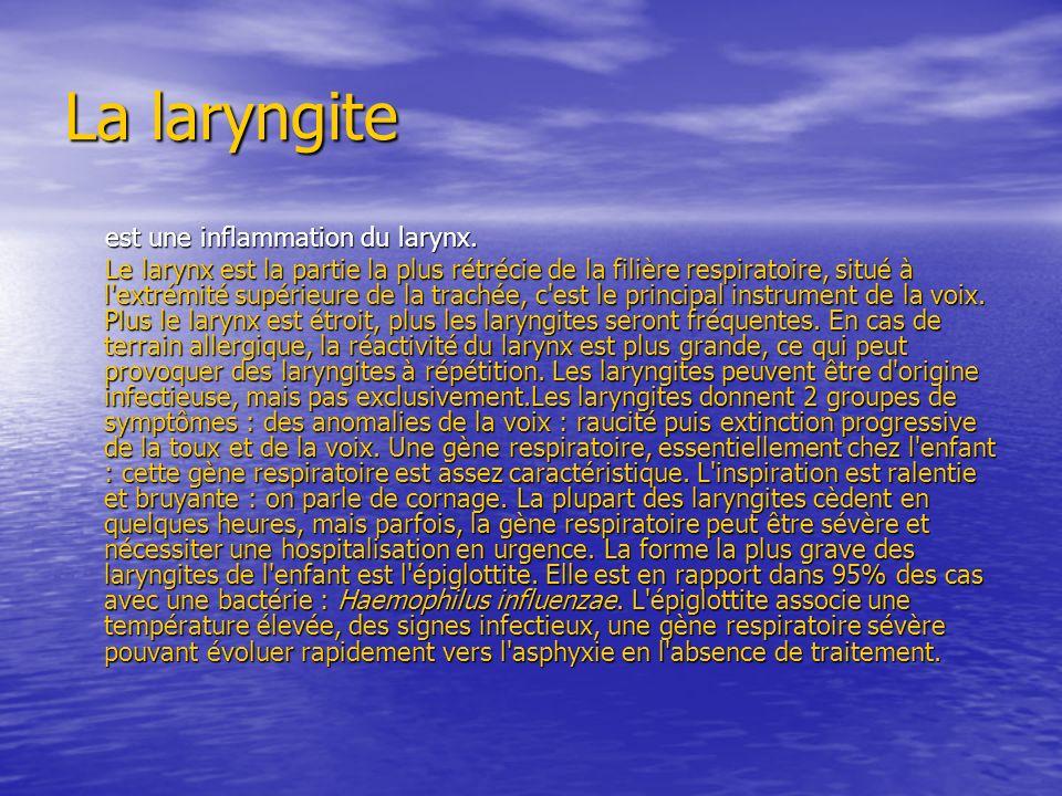 La laryngite est une inflammation du larynx. est une inflammation du larynx.