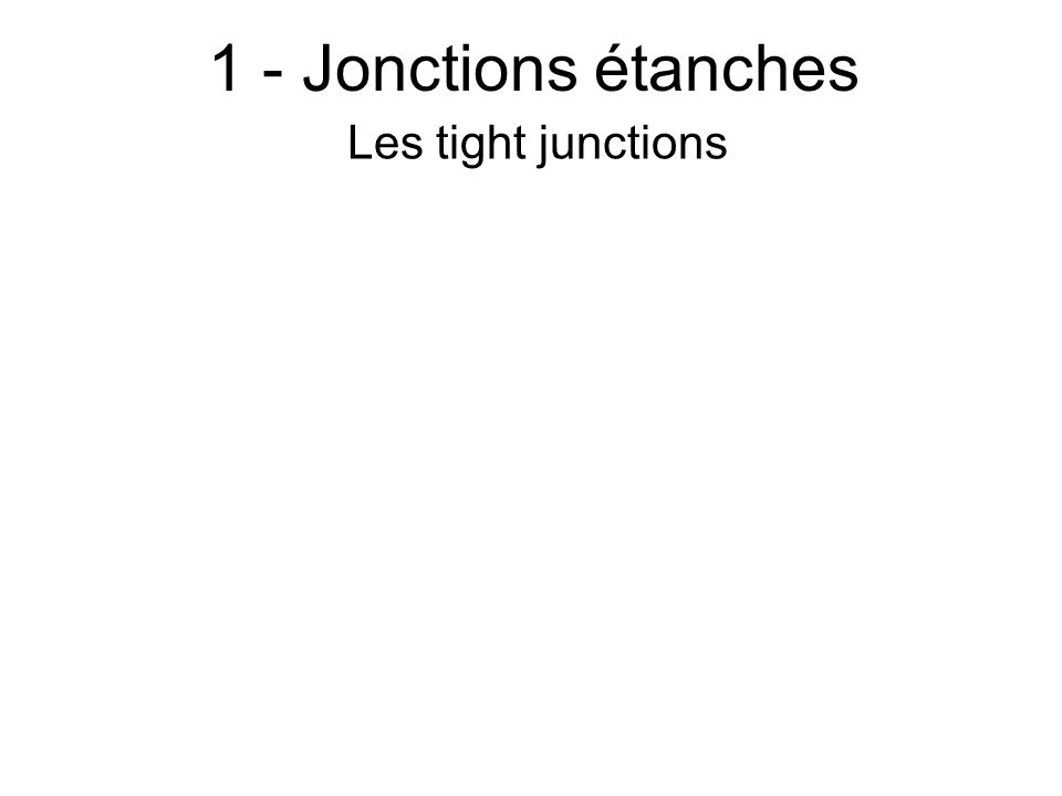 1 - Jonctions étanches Les tight junctions