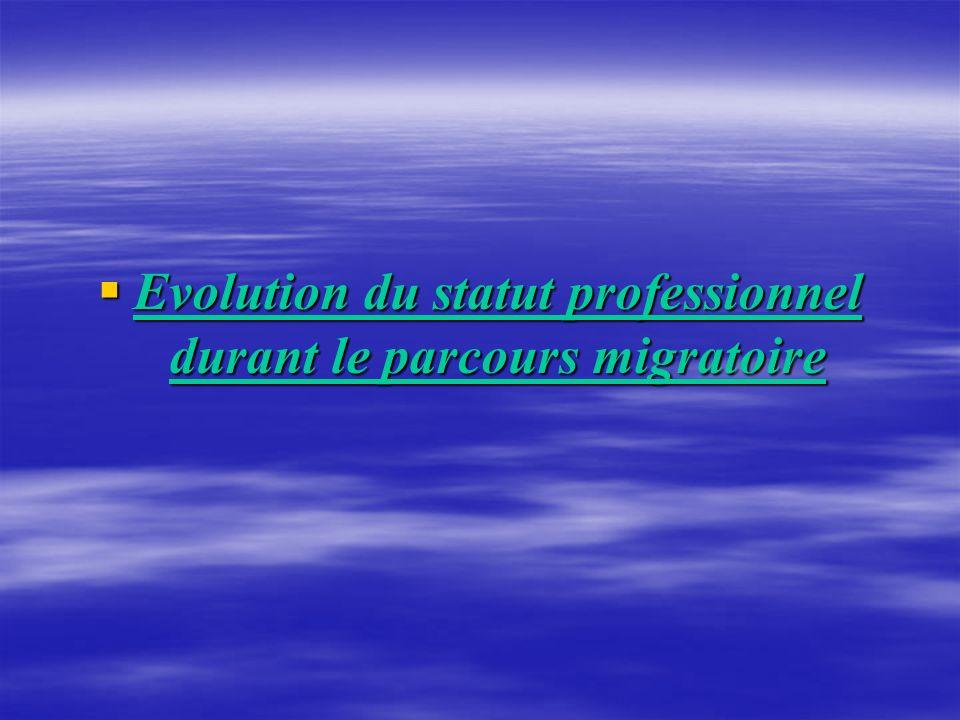 Evolution du statut professionnel durant le parcours migratoire Evolution du statut professionnel durant le parcours migratoire