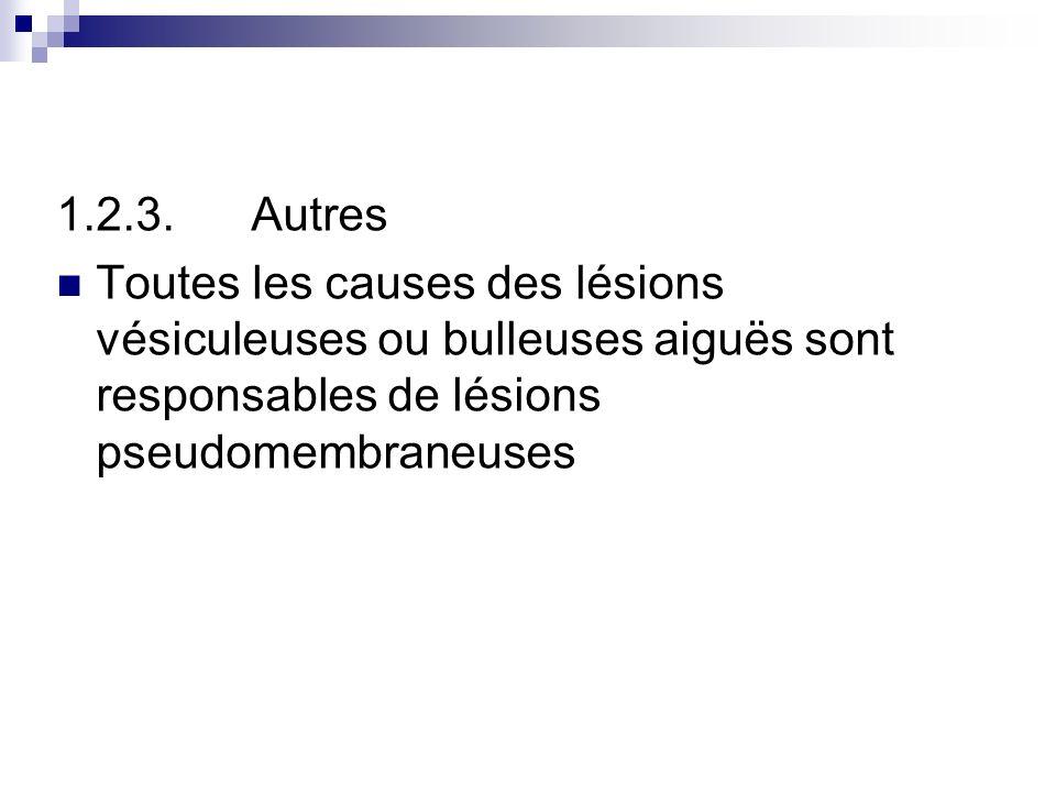 1.2.3. Autres Toutes les causes des lésions vésiculeuses ou bulleuses aiguës sont responsables de lésions pseudomembraneuses