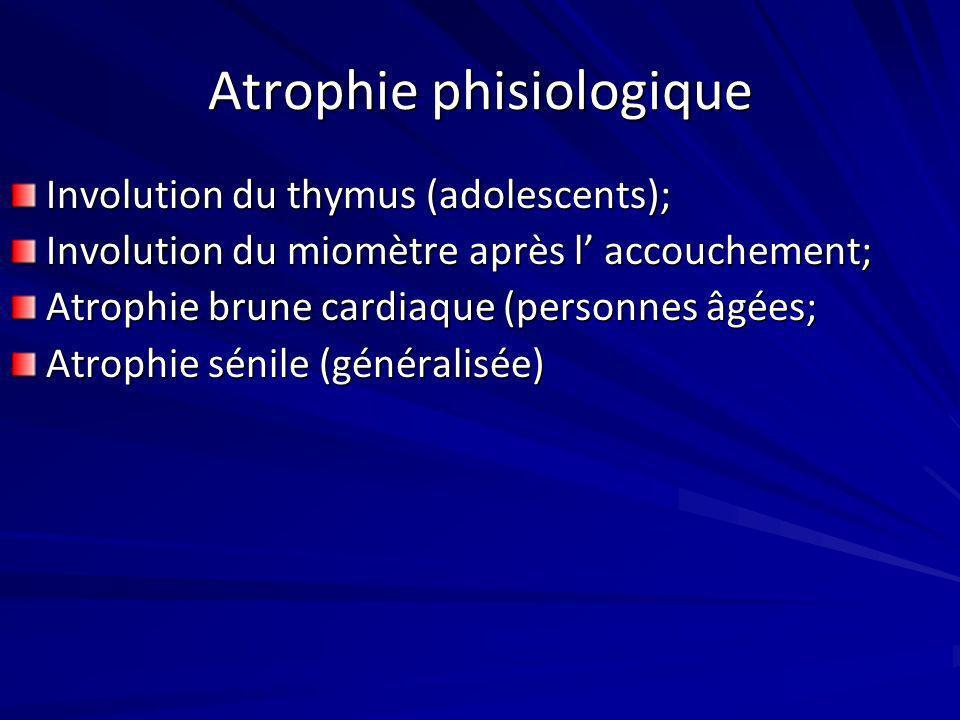 Atrophie phisiologique Involution du thymus (adolescents); Involution du miomètre après l accouchement; Atrophie brune cardiaque (personnes âgées; Atr
