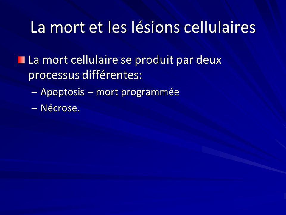 La mort et les lésions cellulaires La mort cellulaire se produit par deux processus différentes: –Apoptosis – mort programmée –Nécrose.