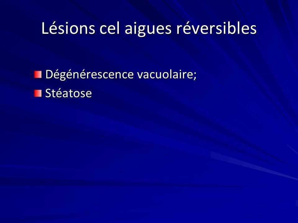 Lésions cel aigues réversibles Dégénérescence vacuolaire; Stéatose