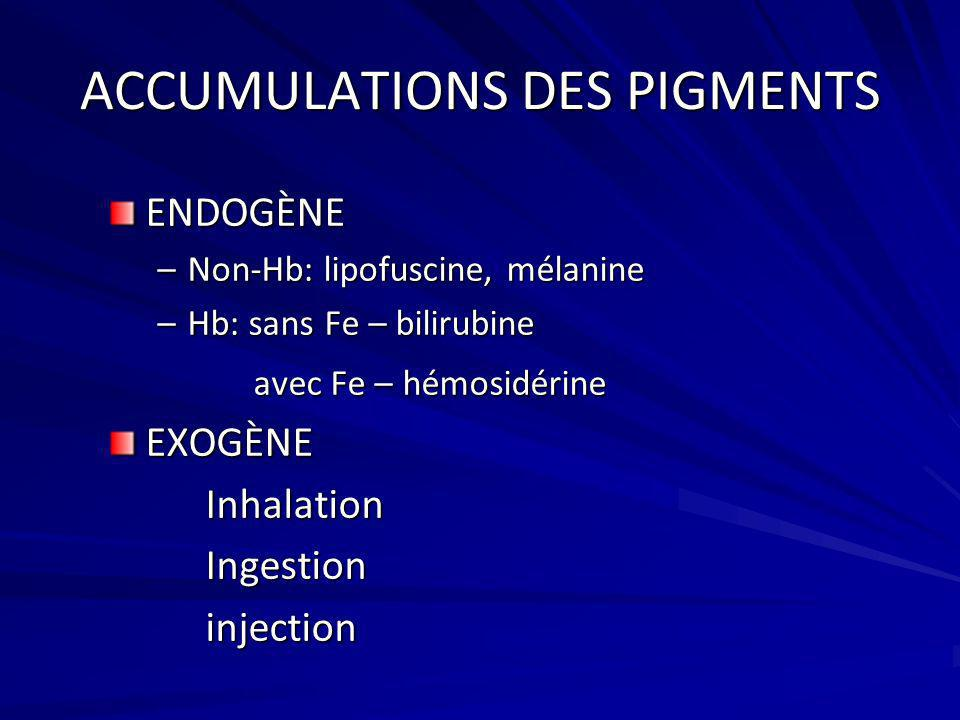 ACCUMULATIONS DES PIGMENTS ENDOGÈNE –Non-Hb: lipofuscine, mélanine –Hb: sans Fe – bilirubine avec Fe – hémosidérine avec Fe – hémosidérineEXOGÈNEInhal