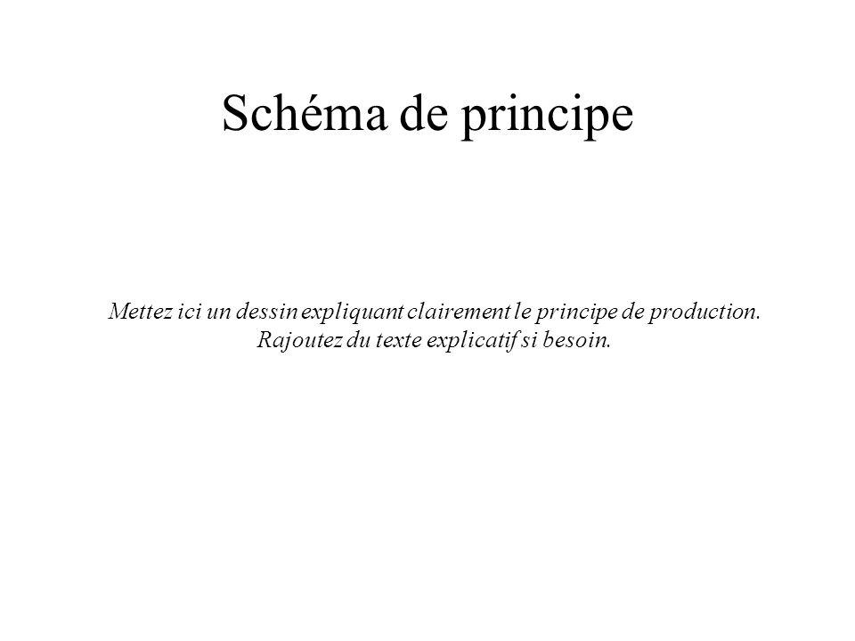 Schéma de principe Mettez ici un dessin expliquant clairement le principe de production.