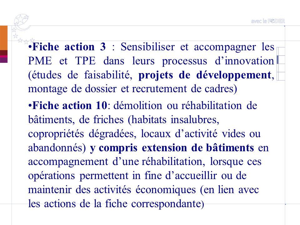 Fiche action 3 : Sensibiliser et accompagner les PME et TPE dans leurs processus dinnovation (études de faisabilité, projets de développement, montage