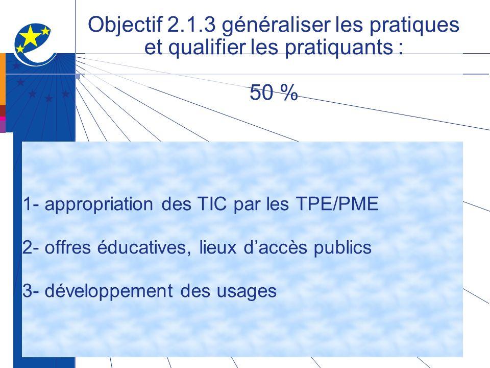 Objectif 2.1.3 généraliser les pratiques et qualifier les pratiquants : 50 % 1- appropriation des TIC par les TPE/PME 2- offres éducatives, lieux daccès publics 3- développement des usages