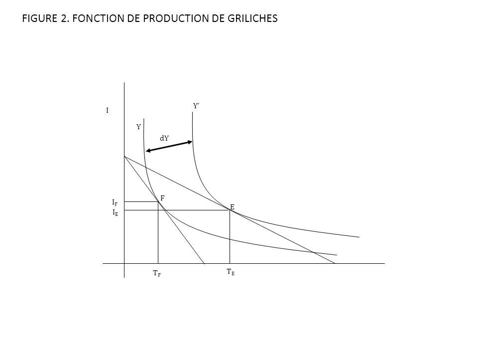 FIGURE 2. FONCTION DE PRODUCTION DE GRILICHES I TFTF TETE IFIF Y Y dY IEIE F E