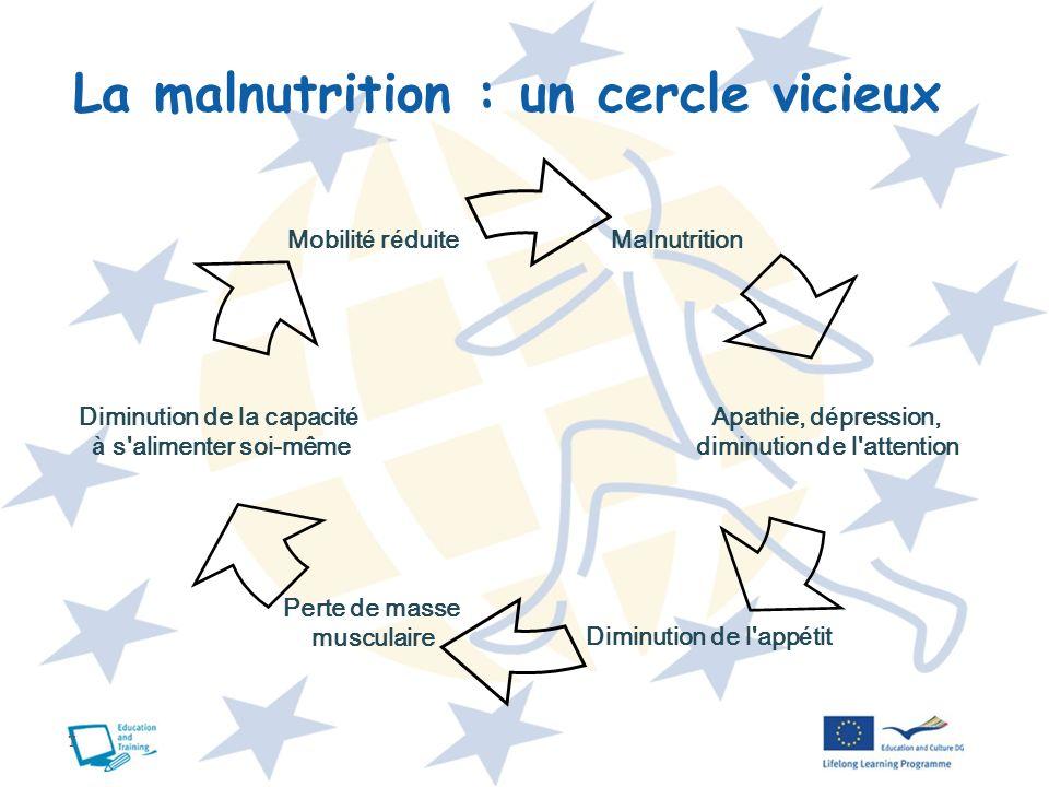 7 La malnutrition : un cercle vicieux Malnutrition Mobilit é r é duite Diminution de la capacit é à s'alimenter soi-même Apathie, d é pression, diminu