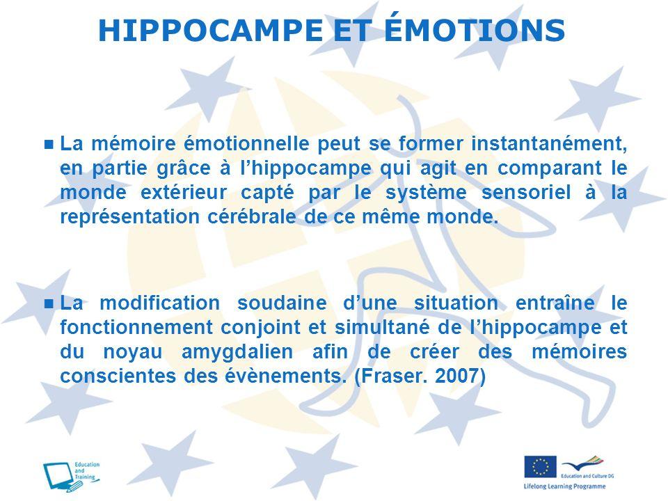 La mémoire émotionnelle peut se former instantanément, en partie grâce à lhippocampe qui agit en comparant le monde extérieur capté par le système sen