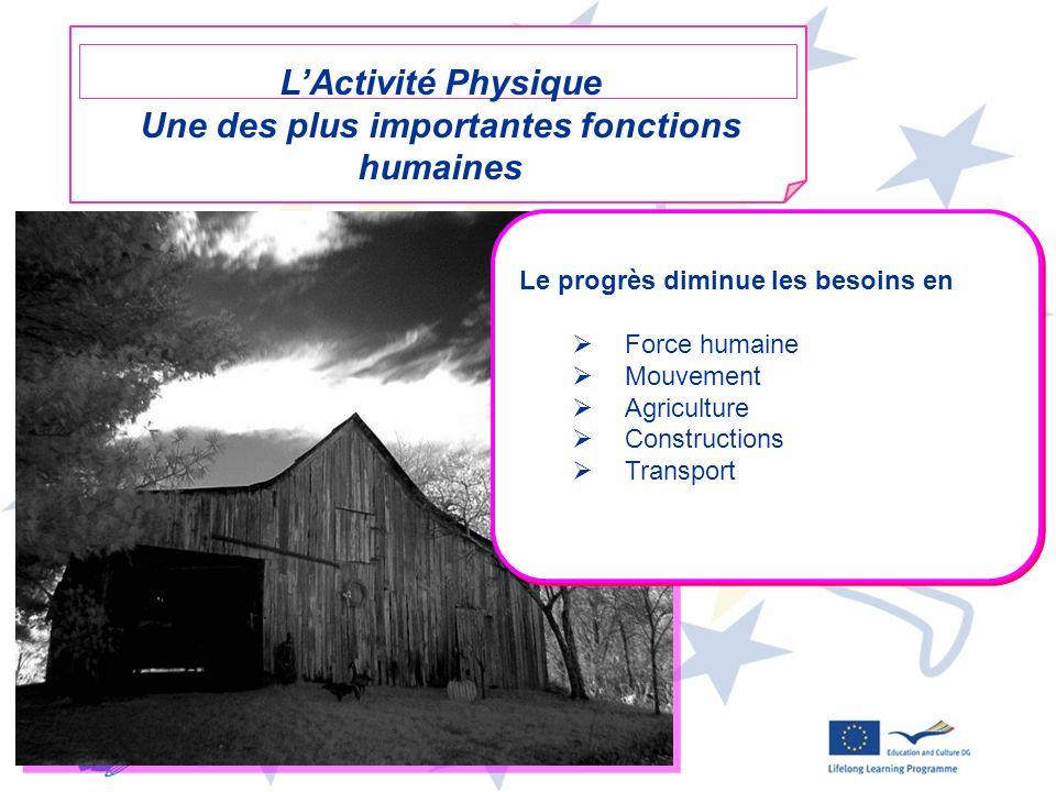 10 Le progrès diminue les besoins en Force humaine Mouvement Agriculture Constructions Transport Le progrès diminue les besoins en Force humaine Mouve