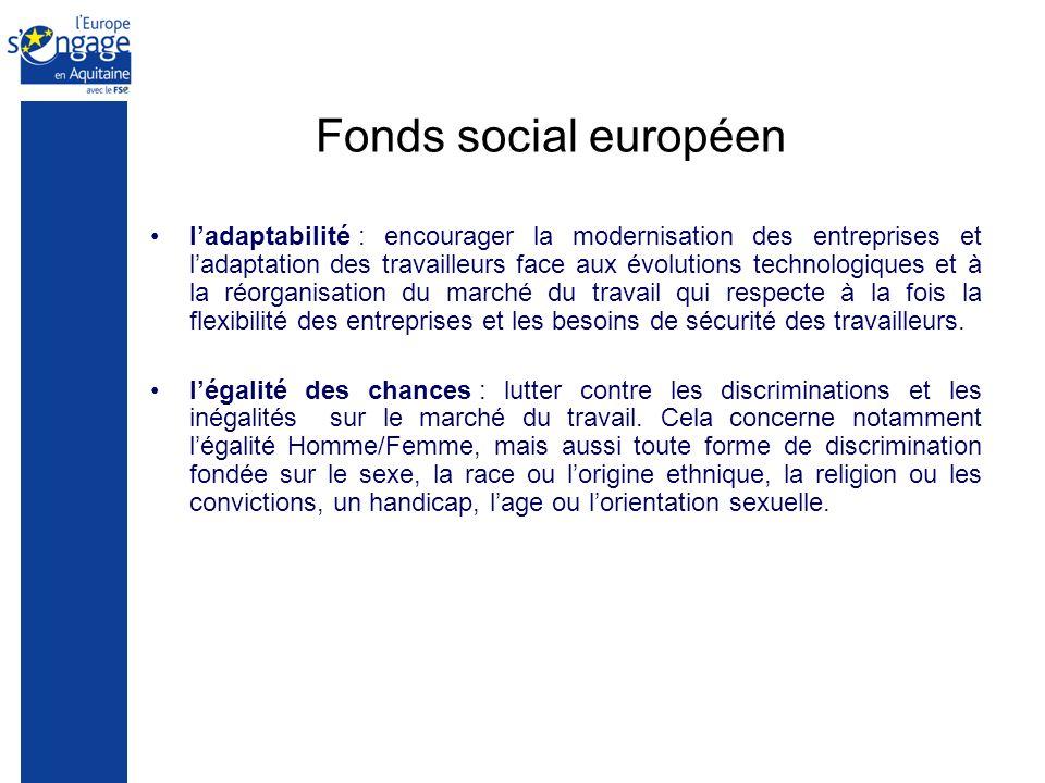 Fonds social européen ladaptabilité : encourager la modernisation des entreprises et ladaptation des travailleurs face aux évolutions technologiques et à la réorganisation du marché du travail qui respecte à la fois la flexibilité des entreprises et les besoins de sécurité des travailleurs.