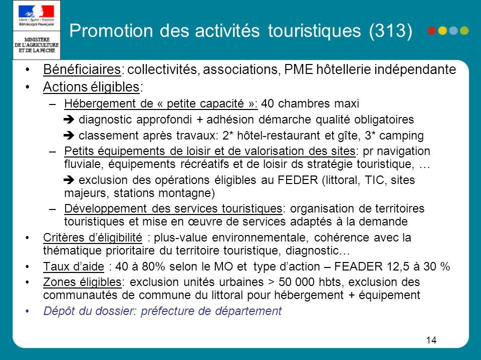 14 Promotion des activités touristiques (313) Bénéficiaires: collectivités, associations, PME hôtellerie indépendante Actions éligibles: –Hébergement