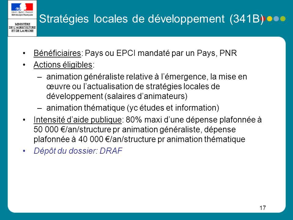 17 Stratégies locales de développement (341B) Bénéficiaires: Pays ou EPCI mandaté par un Pays, PNR Actions éligibles: –animation généraliste relative