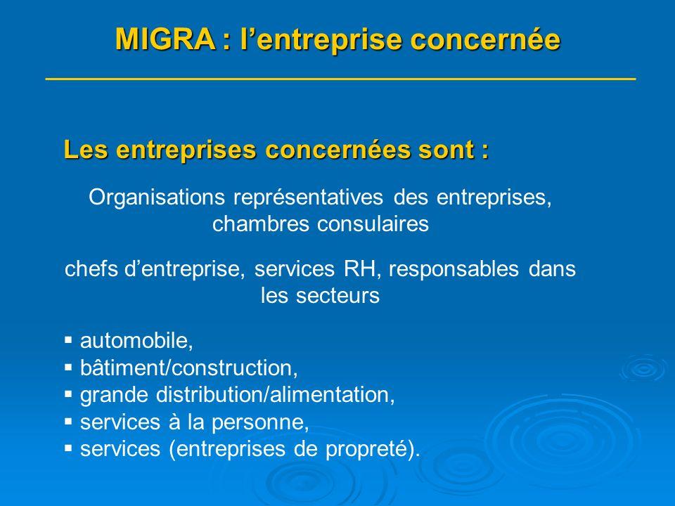 MIGRA : livret/module de formation Recrutement et accueil des salariés migrants - Entreprises : Travail par branche professionnelle/partenaire concerné : SAP, grande distribution/alimentation, bâtiment, automobile, propreté : I.
