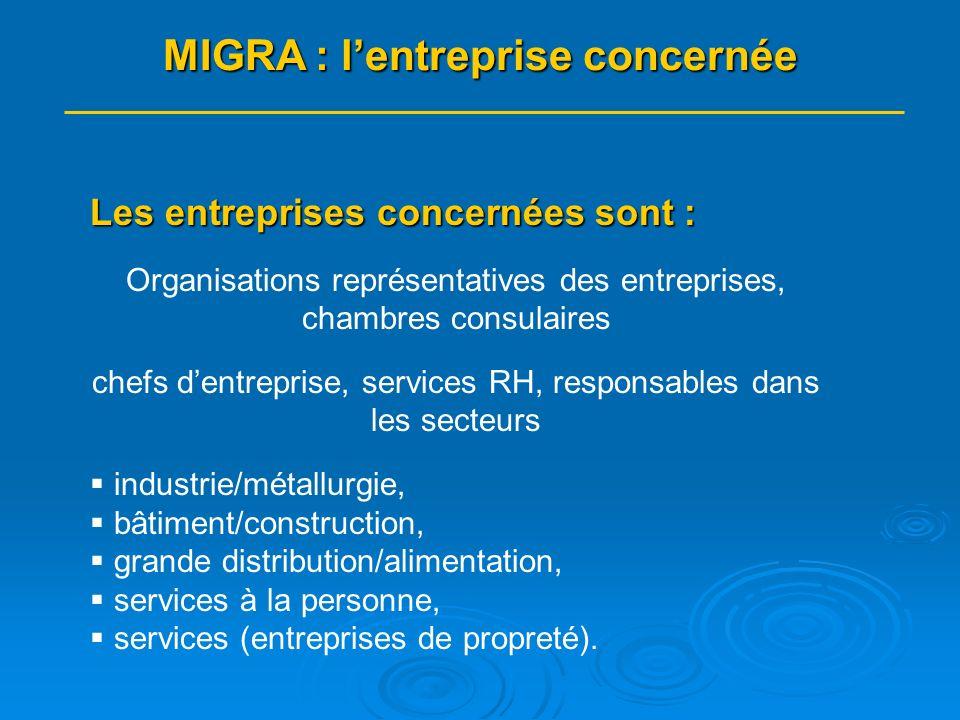 Lintégration sera facilitée par la création : doutils à destination des entreprises Les outils ainsi créés se déclineront en : un livret à destination des entreprises un module de formation à destination des entreprises MIGRA : les moyens