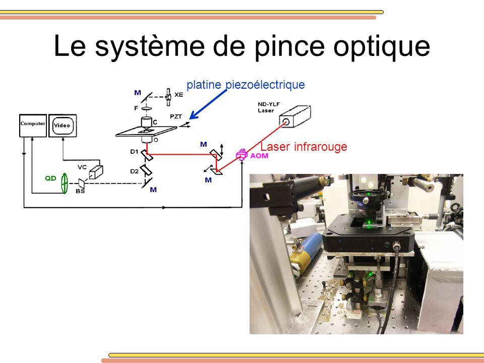 Le système de pince optique platine piezoélectrique Laser infrarouge