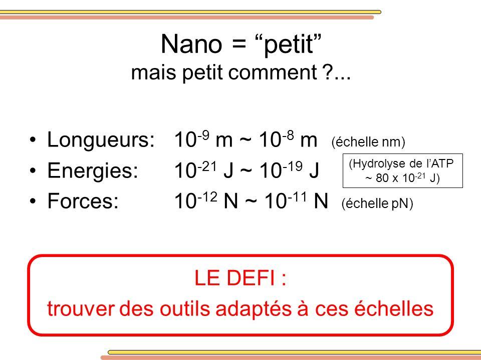 Nano = petit mais petit comment ?... Longueurs:10 -9 m ~ 10 -8 m (échelle nm) Energies:10 -21 J ~ 10 -19 J Forces:10 -12 N ~ 10 -11 N (échelle pN) LE