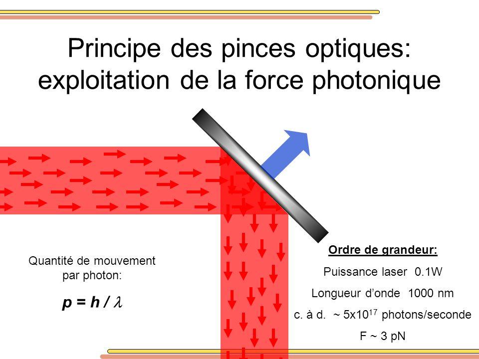 Principe des pinces optiques: exploitation de la force photonique Quantité de mouvement par photon: p = h / Ordre de grandeur: Puissance laser 0.1W Lo