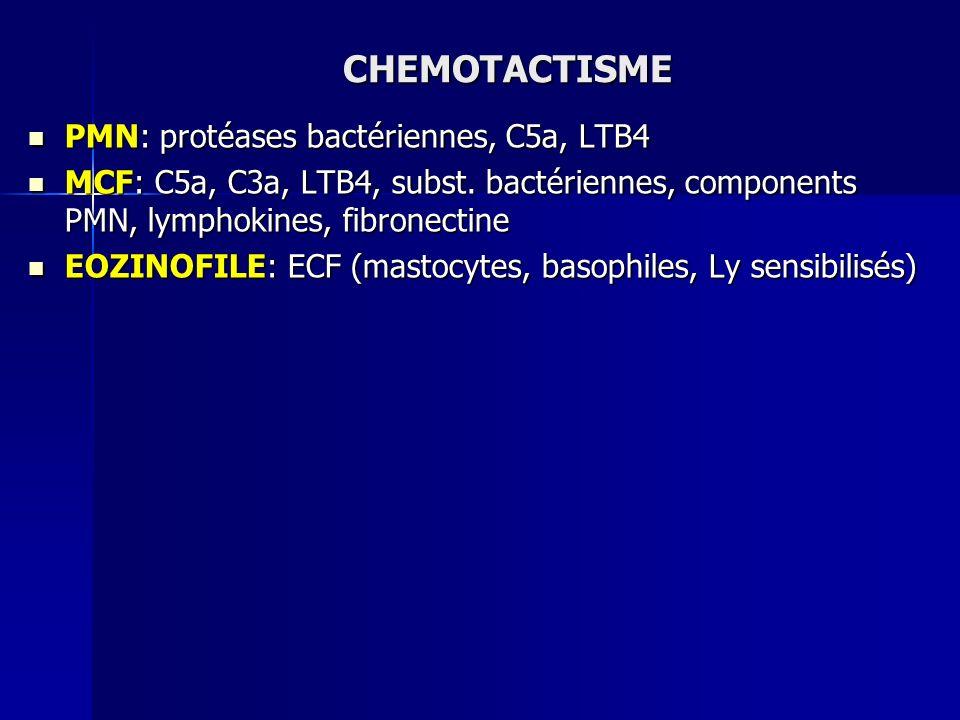 CHEMOTACTISME PMN: protéases bactériennes, C5a, LTB4 PMN: protéases bactériennes, C5a, LTB4 MCF: C5a, C3a, LTB4, subst. bactériennes, components PMN,
