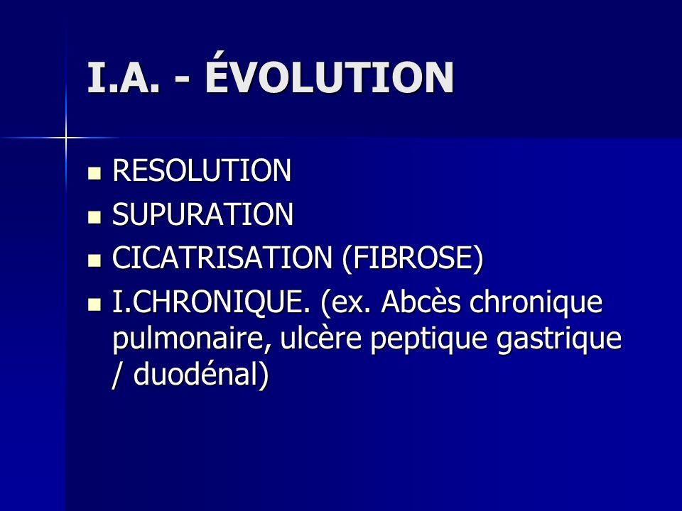 I.A. - ÉVOLUTION RESOLUTION RESOLUTION SUPURATION SUPURATION CICATRISATION (FIBROSE) CICATRISATION (FIBROSE) I.CHRONIQUE. (ex. Abcès chronique pulmona