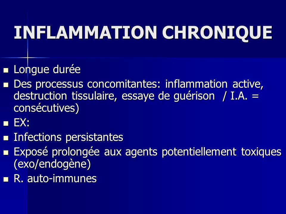 INFLAMMATION CHRONIQUE Longue durée Longue durée Des processus concomitantes: inflammation active, destruction tissulaire, essaye de guérison / I.A. =