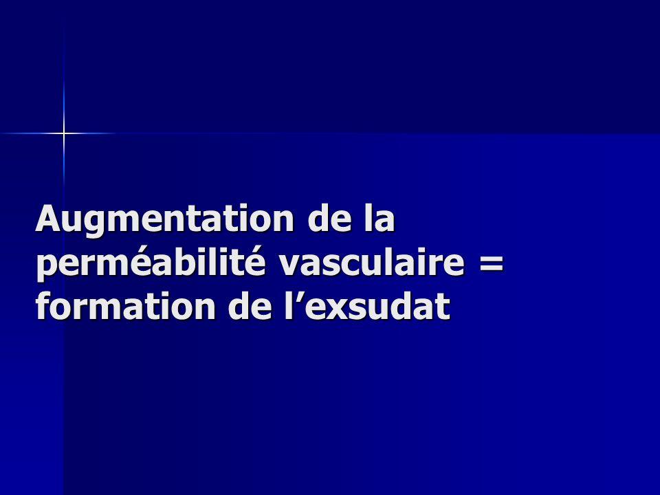 Augmentation de la perméabilité vasculaire = formation de lexsudat