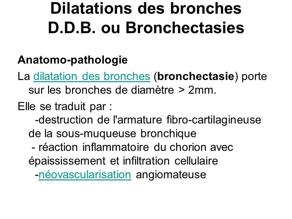 Dilatations des bronches D.D.B. ou Bronchectasies Anatomo-pathologie La dilatation des bronches (bronchectasie) porte sur les bronches de diamètre > 2