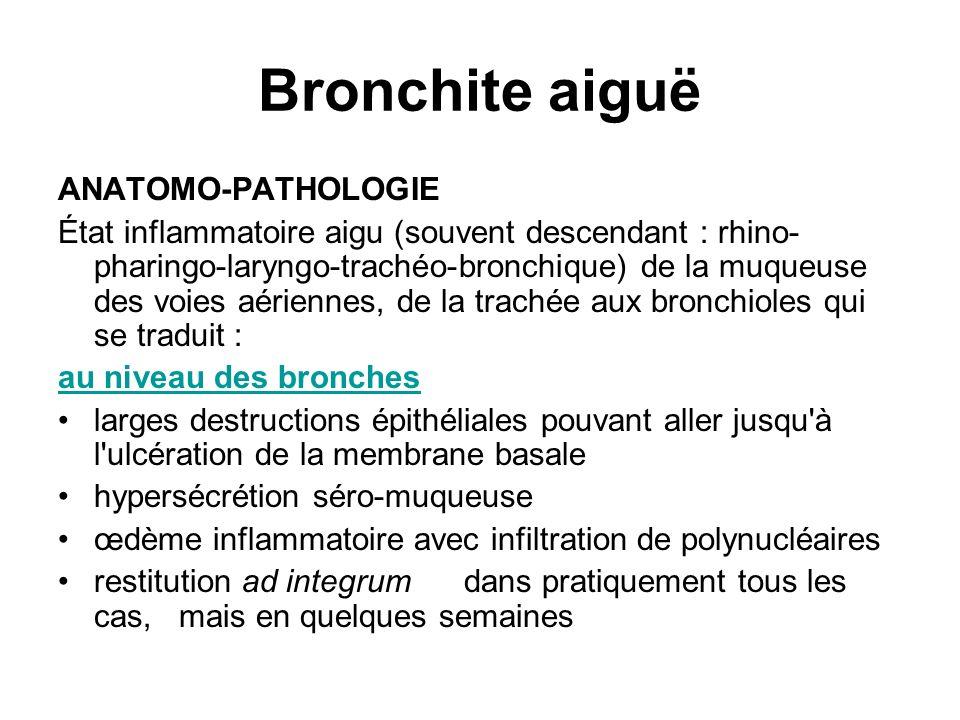 Bronchite aiguë ANATOMO-PATHOLOGIE État inflammatoire aigu (souvent descendant : rhino- pharingo-laryngo-trachéo-bronchique) de la muqueuse des voies
