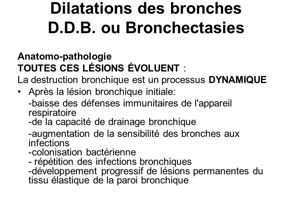 Dilatations des bronches D.D.B. ou Bronchectasies Anatomo-pathologie TOUTES CES LÉSIONS ÉVOLUENT : La destruction bronchique est un processus DYNAMIQU