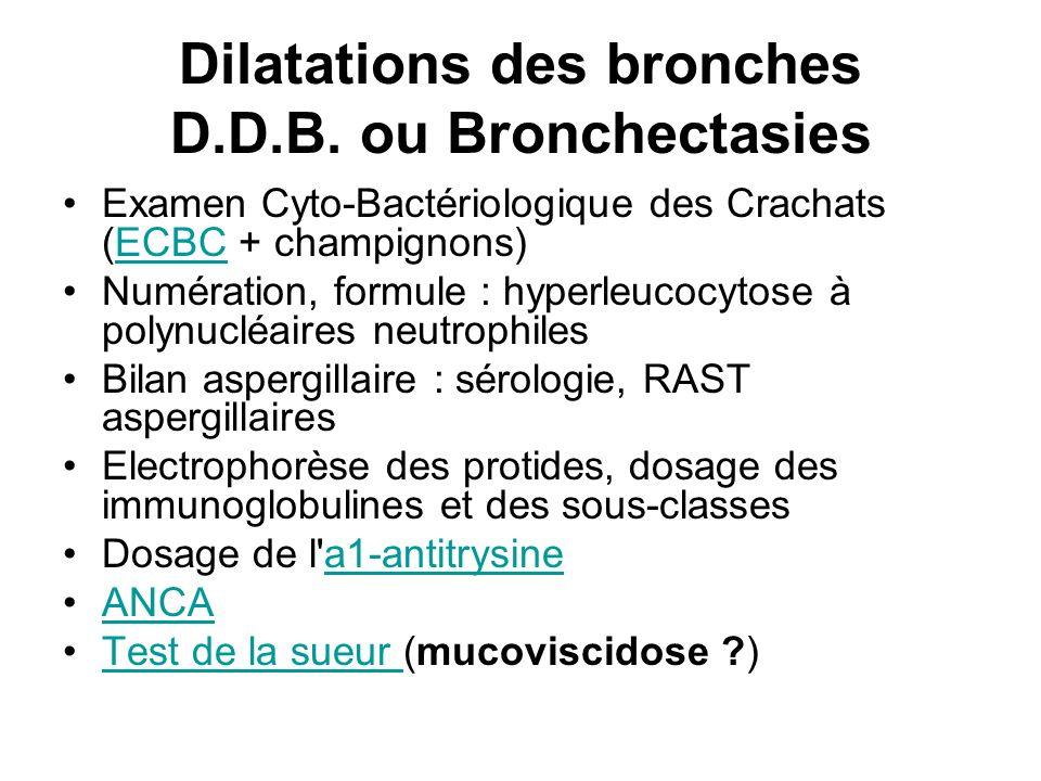 Dilatations des bronches D.D.B. ou Bronchectasies Examen Cyto-Bactériologique des Crachats (ECBC + champignons) ECBC Numération, formule : hyperleucoc