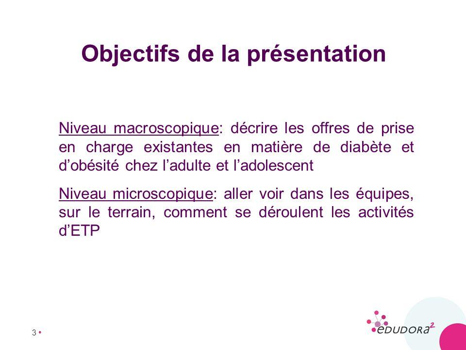 3 Niveau macroscopique: décrire les offres de prise en charge existantes en matière de diabète et dobésité chez ladulte et ladolescent Niveau microsco