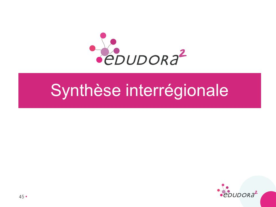 45 Synthèse interrégionale