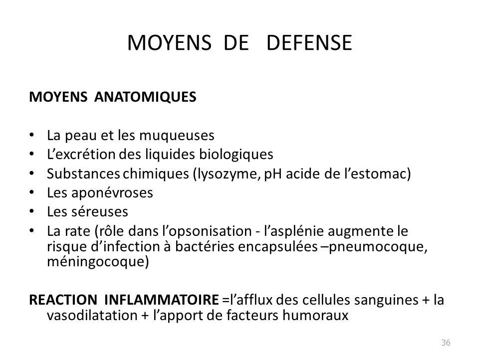 MOYENS DE DEFENSE MOYENS ANATOMIQUES La peau et les muqueuses Lexcrétion des liquides biologiques Substances chimiques (lysozyme, pH acide de lestomac