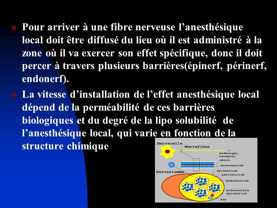 Pour arriver à une fibre nerveuse lanesthésique local doit être diffusé du lieu où il est administré à la zone où il va exercer son effet spécifique,