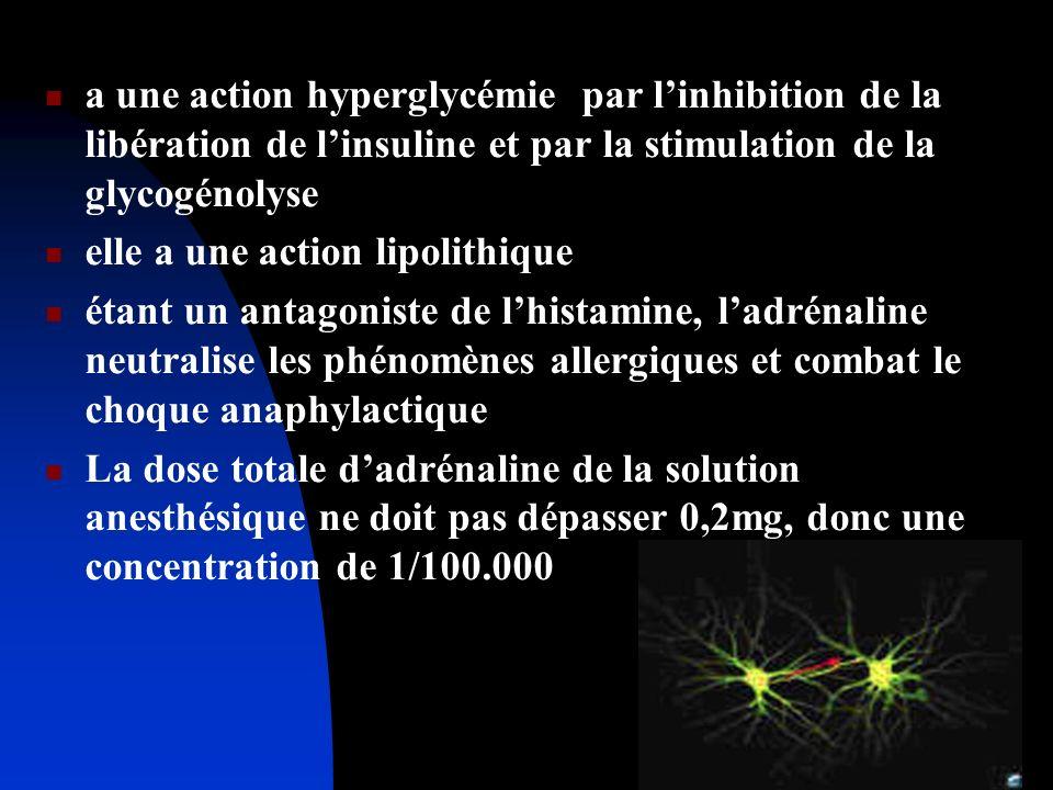 a une action hyperglycémie par linhibition de la libération de linsuline et par la stimulation de la glycogénolyse elle a une action lipolithique étan