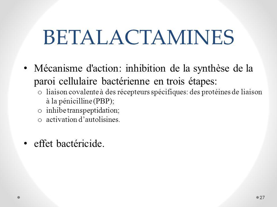 BETALACTAMINES Mécanisme d'action: inhibition de la synthèse de la paroi cellulaire bactérienne en trois étapes: o liaison covalente à des récepteurs
