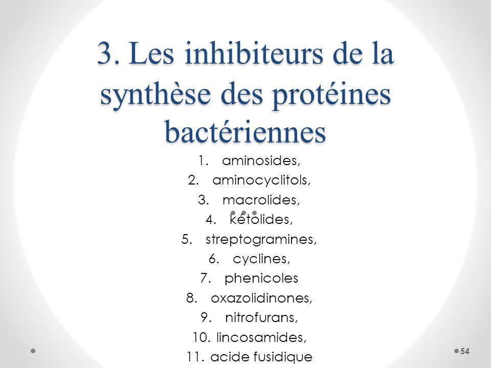 3. Les inhibiteurs de la synthèse des protéines bactériennes 1.aminosides, 2.aminocyclitols, 3.macrolides, 4.kétolides, 5.streptogramines, 6.cyclines,