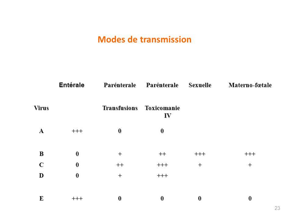 Modes de transmission Entérale Parénterale Sexuelle Materno-fœtale Virus Transfusions Toxicomanie IV A+++00 B0+++++++++ C0+++++++ D0++++ E+++0000 23