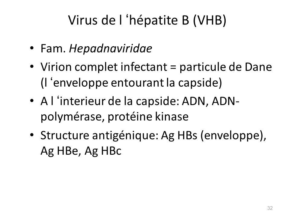 Virus de l hépatite B (VHB) Fam. Hepadnaviridae Virion complet infectant = particule de Dane (l enveloppe entourant la capside) A l interieur de la ca