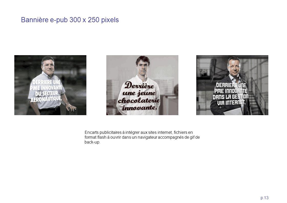 p.13 Bannière e-pub 300 x 250 pixels Encarts publicitaires à intégrer aux sites internet, fichiers en format flash à ouvrir dans un navigateur accompa