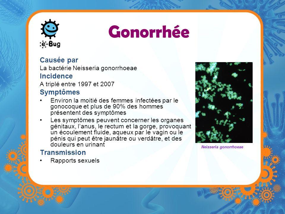 Gonorrhée Causée par La bactérie Neisseria gonorrhoeae Incidence A triplé entre 1997 et 2007 Symptômes Environ la moitié des femmes infectées par le g