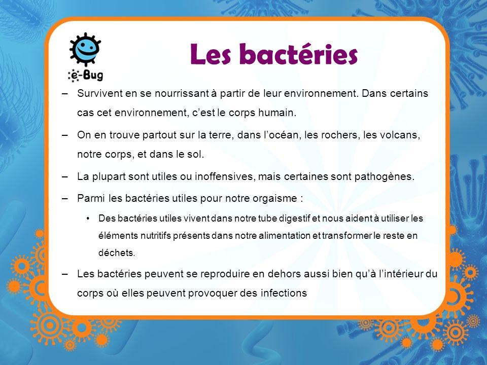 Les bactéries –Survivent en se nourrissant à partir de leur environnement. Dans certains cas cet environnement, cest le corps humain. –On en trouve pa
