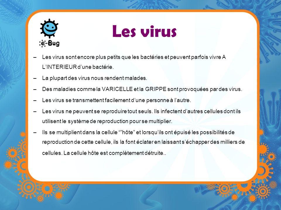 Les virus –Les virus sont encore plus petits que les bactéries et peuvent parfois vivre A LINTERIEUR dune bactérie. –La plupart des virus nous rendent