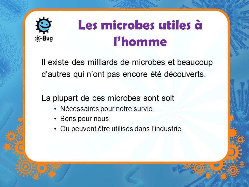 Les microbes utiles à lhomme Il existe des milliards de microbes et beaucoup dautres qui nont pas encore été découverts. La plupart de ces microbes so