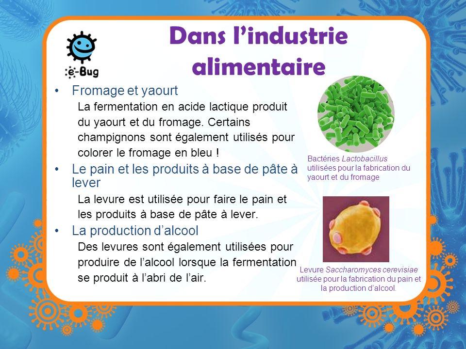 Dans lindustrie alimentaire Fermentation –Un processus au cours duquel les bactéries dégradent les sucres complexes en composés plus simples comme le gaz carbonique et lalcool.