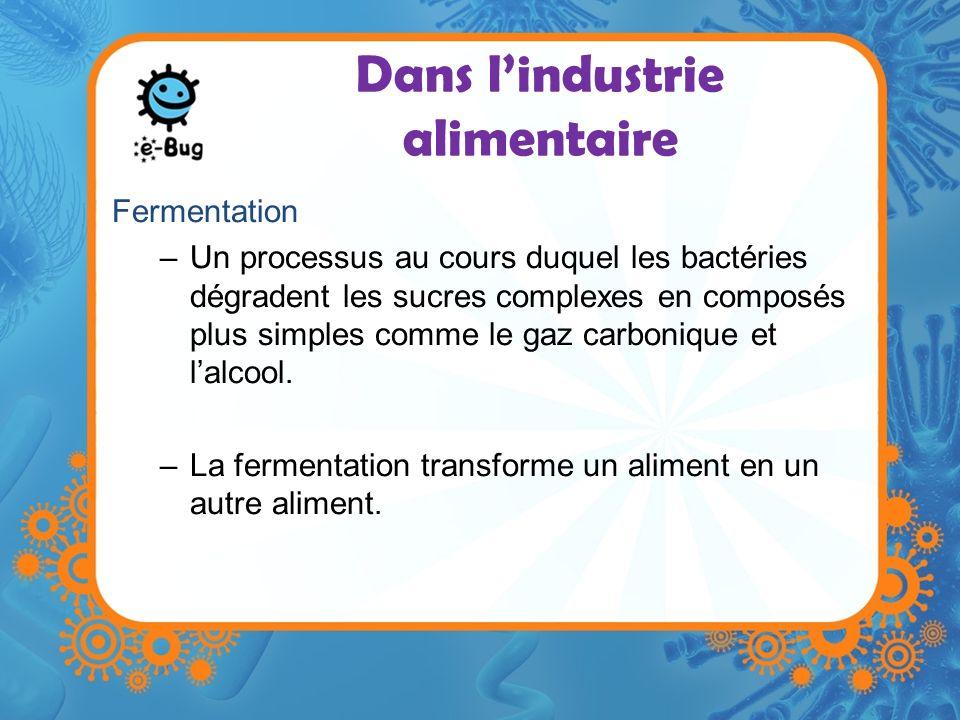 Dans lindustrie alimentaire Fermentation –Un processus au cours duquel les bactéries dégradent les sucres complexes en composés plus simples comme le