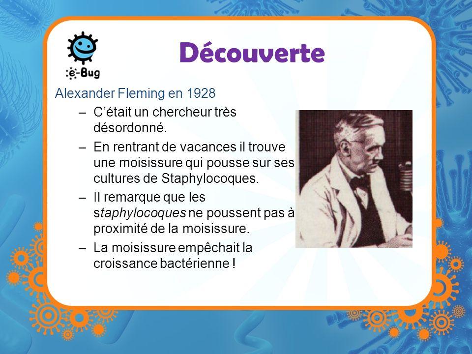 Découverte Alexander Fleming en 1928 –Cétait un chercheur très désordonné. –En rentrant de vacances il trouve une moisissure qui pousse sur ses cultur
