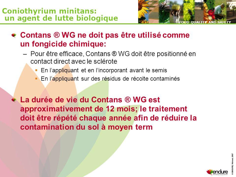 © ENDURE, February 2007 FOOD QUALITY AND SAFETY © ENDURE, February 2007 FOOD QUALITY AND SAFETY Coniothyrium minitans: un agent de lutte biologique Co